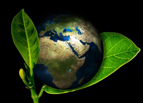 Департамент туризма Дубая разработал новую систему наград – Sustainability Awards