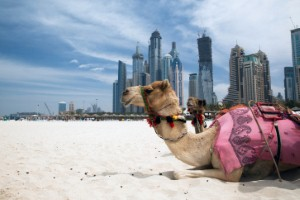 الإمارات تضخ استثمارًا بقيمة 40 مليار دولار في المشاريع السياحية