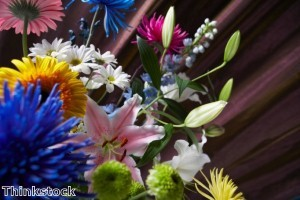 زراعة 30 مليون زهرة في دبي هذا العام