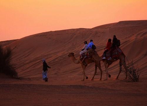 دبي تخفف اللوائح التنظيمية لتنشيط قطاع السياحة