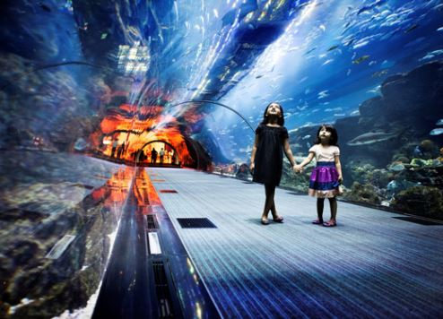Dubai Aquarium is a popular tourist destination