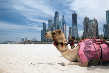 Dubai's Tourism Vision 2020 'on track for success'