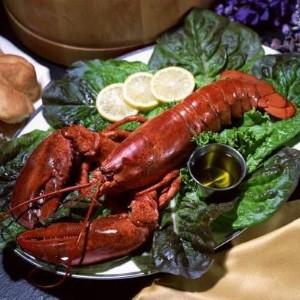Dubai to host Food Carnival tomorrow