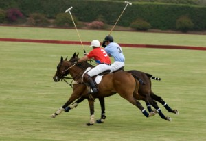 Dubai aiming to be 'destination for events'