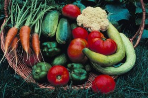 More organic food heading to Dubai